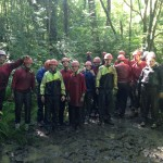 Llain Activity Centre | Forest Adventure image 10