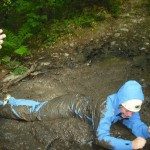 Llain Activity Centre | Forest Adventure image 2